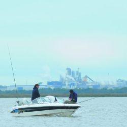 Pesca  Pejerrey emb-207