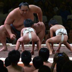 1224-sumo-afpg