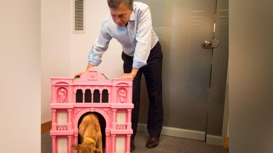 """Balcarse, el perro del PRO, ahora tiene su cucha """"Casa Rosada""""."""