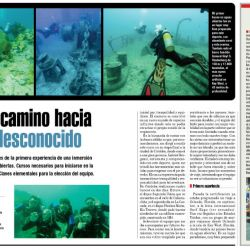 DOLPHIN BUCEO