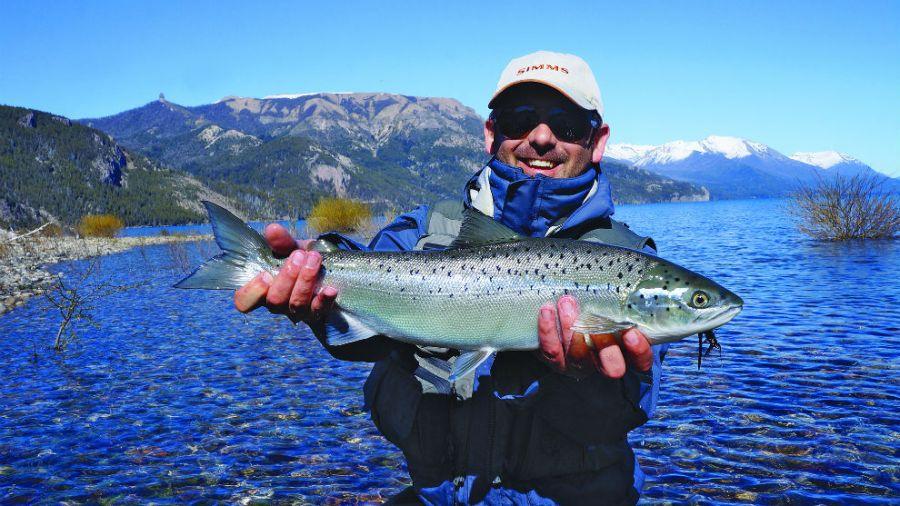 salmón traful
