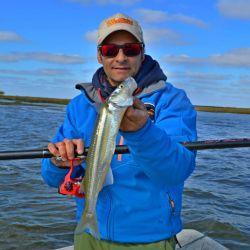 A Toda Pesca (5)
