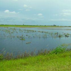 caza inundación