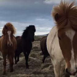 0806_caballos_salvajes_Weekend_990g