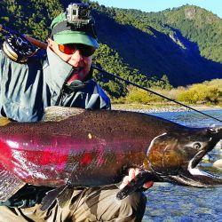 salmon chinook puelo