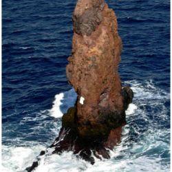 piedrakraken