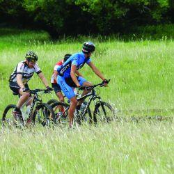 Bicicletas Guichon