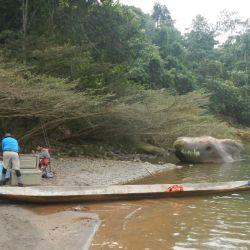 pesca-bolivia7