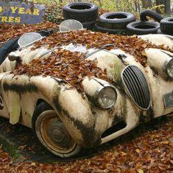 coches-abandonados-6