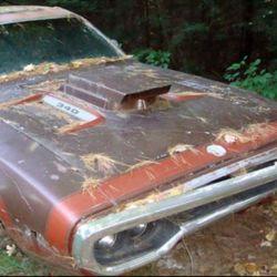 coches-abandonados-8