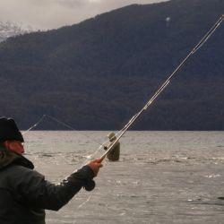 pescamosca4