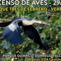 flyer censo verano 2017