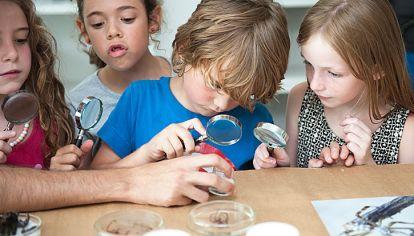 """para todos. En el C3 desarrollan el amor por la ciencia: hay talleres para observar insectos o hacer barriletes. Los más """"artistas"""" pueden elegir pintar o hacer títeres. Y en la Da Vinci aprenden programación y pintan con lápices 3D."""