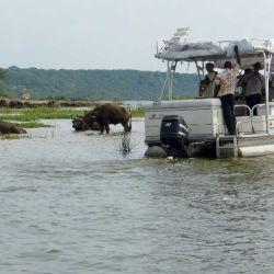 Paseo en barco por el canal de Kazinga en el Parque Nacional Queen Elizabeth en Uganda