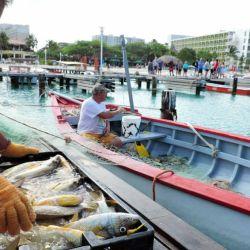 Aruba pesca