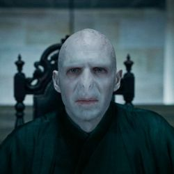 harry potter (8)