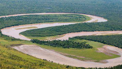 Único. Ubicado entre los ríos Teuco-Bermejo y Bermejito, es el bosque seco más grande del mundo.