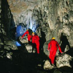 Cueva eslovenia proteo (5)