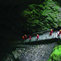 Cueva eslovenia proteo (8)
