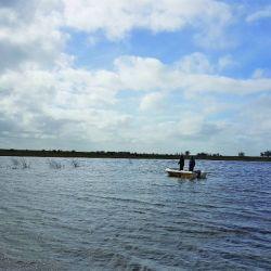 pesca tarariras (9)