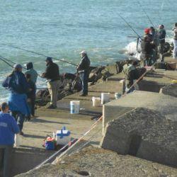 pesca-torneo