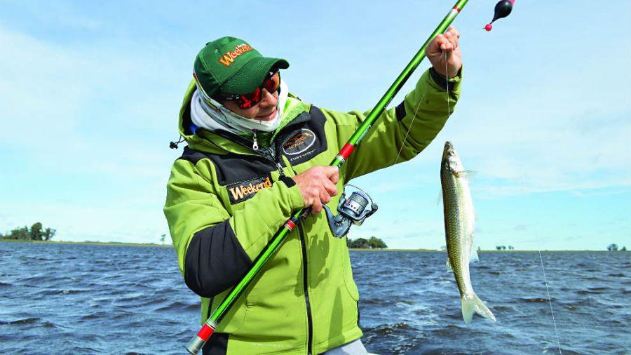 Pesca pejerreyes (1)