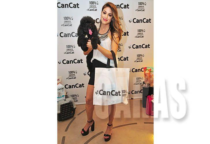 cancat-2