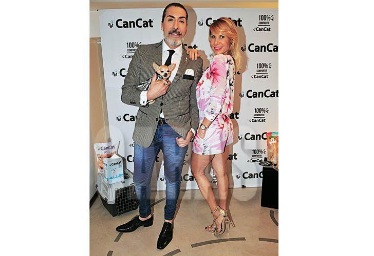 cancat-4