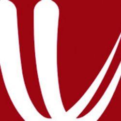 icono windy copy