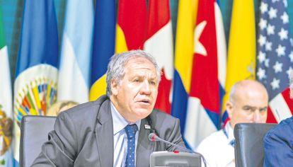 Distincion. Luis Almagro fue reconocido por la WJA y el Premio Mundial de la Paz.