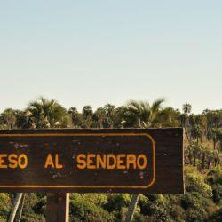 Parque Nacional El Palmar Entre Rios (1)