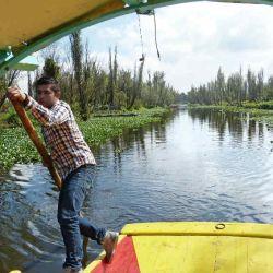 Xochimilco_en_barco_55166673(1)