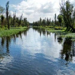 Xochimilco_en_barco_55166673(2)