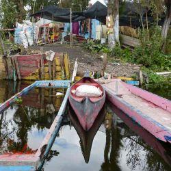 Xochimilco_en_barco_55166673(5)