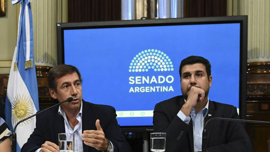 Senator Luis Naidenoff and Lawmaker Marcos Cleri during a debate about the future of the Macri government's January decree package.