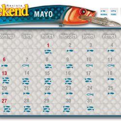 Pique-del-mes-WEB-mayo