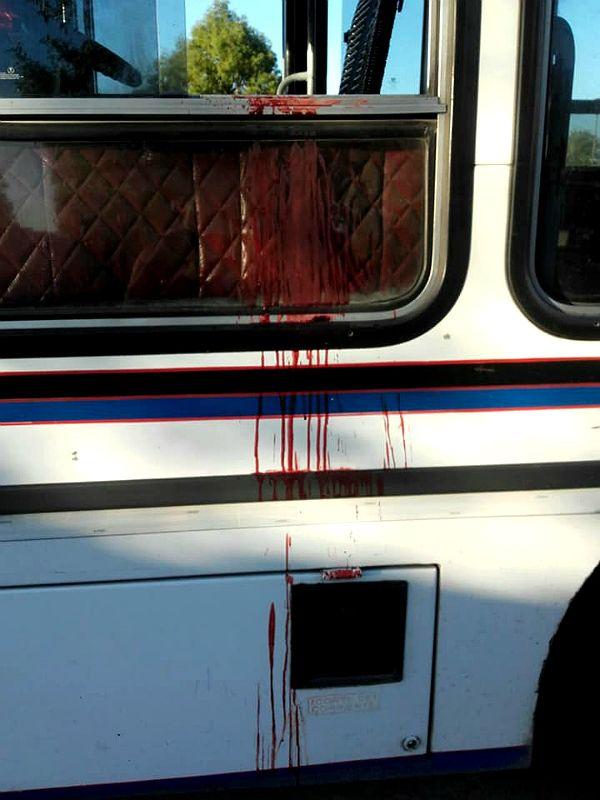 Así quedó el colectivo de la línea 620 tras el crimen del colectivero.