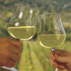 Birndis con vino blanco