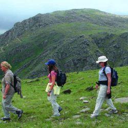 Trekking hacia el Salto del Tigre DR DSC00251