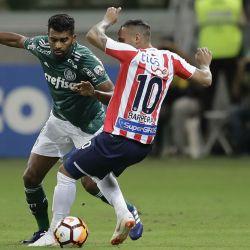 Palmeiras Junior_20180524