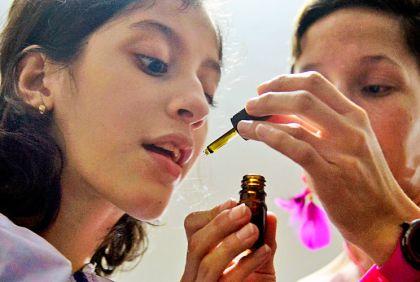 Resultado de imagen de cannabis medicinal garrahan