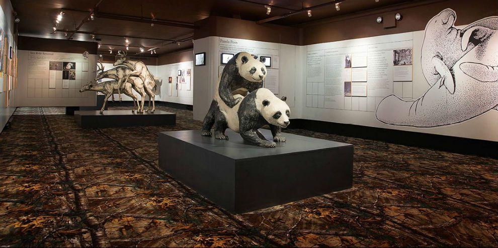 Diez museos bizarros | Weekend