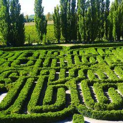 El Laberinto de Borges otro homenaje en el predio de Finca Los Álamos