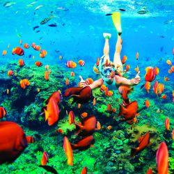 El snorkel es una actividad para toda la familia y una forma única de ponerse en contacto con la naturaleza