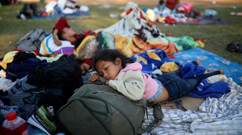 Mas De 2 300 Ninos Ya Fueron Separados De Sus Familias En Frontera