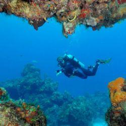 El Triángulo de Coral
