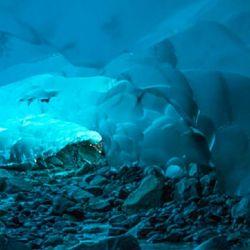 Glaciar Mendenhall