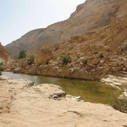 Parque de Ein Avdat