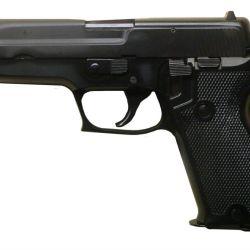 SIG 220