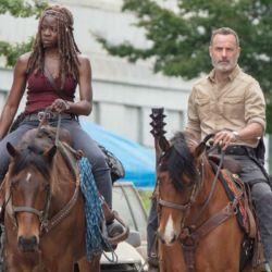 The Walking Dead 9 (6)